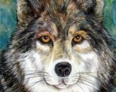 Timber Wolf School Mascot Original Art Colored Pencil Watercolor by AllKindsofArt artist Glenda Mullins