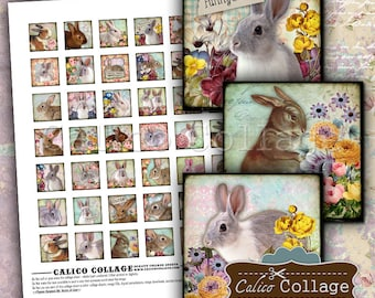 Funny Bunny Digital Collage Sheet 1x1 Inch Squares for Pendants, Decoupage, Paper Crafts, Junk Journals, Journalling, Scrapbooking