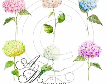 Victorian Beautiful Vintage Chic Shabby Colorful Hydrangeas Spray Waterslide Water Slide Decals Decal Miniature Dollhouse VF-179