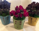 Set of three dried flower planters. Ceramic pots with dragonflies filled with dried lavender, oregano, and roses.