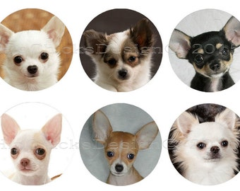 """INSTANT DOWNLOAD -  Chihuahua 1"""" Circle Collage Sheet - Bottlecap Images"""