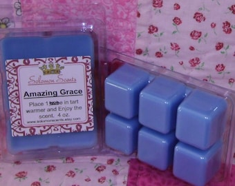 Gracefully Amazing  Wax Melt