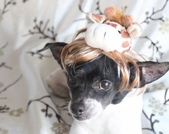 Giraffe pet   wig for dog or cat