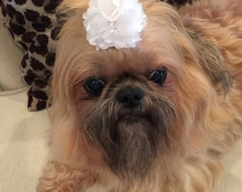 White Satin and Tulle Flower Dog Puppy Bow Barrette