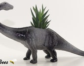 DINOSAUR SALE!  Diplodocus Dinosaur Planter Pot - Room Decor, Desktop, Table, Dorm - Your Choice: Air Plant, Succulent, Haworthia or Cactus