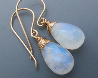 Rainbow Moonstone Gemstone Goldfilled Earrings EE Designs
