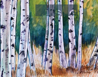 Birches No. 1 Watercolor Art Print by James Steeno