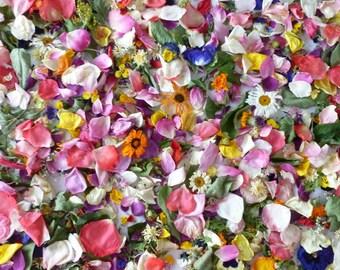 Dried Flowers, Wildflower Wedding, Flower girl, Centerpiece, Reception, Favor, Biodegradable, Petal Confetti, Craft Supplies, 12 Boxes