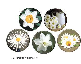 Flower Garden Refrigerator Magnets White Flowers Photo Fridge Magnet Set 2 1/4 inches in diameter