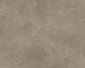 Light Taupe Suede Tonal, P & B Textiles,  # SUE5301-DS