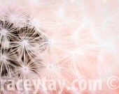 Pink, Dandelion Print, Girl Nursery Decor, Pink Flower Photos, Pastel, Dandelion Art, Nature Photography