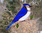 Blue Jay - Large Stained Glass Bird Suncatcher 122815