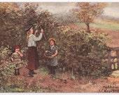 Artist Signed Raphael Tuck Oilette - Blackberrying- English, England, Children, Berry Picking, Impressionistic, Paintings, Paper, Ephemera