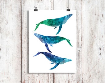 Humpback Whale Trio Watercolor A3 Print, Whale art, Humpback painting, Humpback whales, Watercolor Art Print, Whale painting, Beach Decor