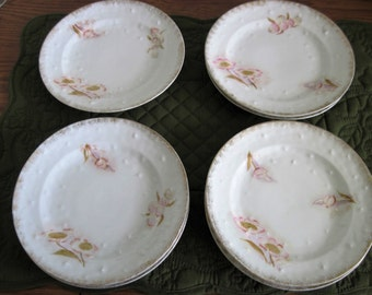 7 Antique Vintage Porcelain China Hand Painted Floral Dessert Plates With Star Embossed Styling Gold Dust Trim
