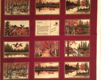 A Wonderful Wish You Were Here By Moda Fabric Panel Free US Shipping