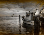 Fishing Boat and Gulls with painterly effects by Aransas Pass Harbor in Corpus Christi Bay by the Gulf of Mexico No.FA0578 Photograph