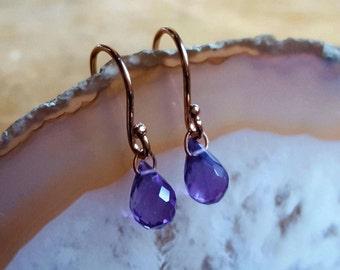 Amethyst Earrings Amethyst Dangle Earrings February Birthstone Earrings Womens Gift 14K Gold Amethyst Jewelry Amethyst Rose Gold Earrings