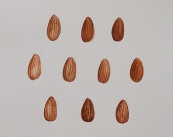 Original Watercolour Illustration - Almonds
