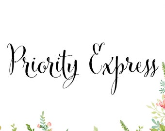 Priority Express Shipping Upgrade - Domestic Shipping Only