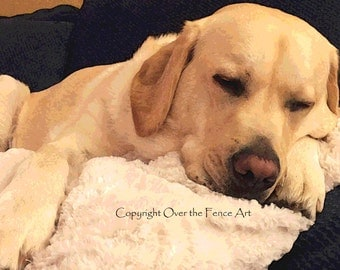 YELLOW LABRADOR NAPS Posterize Style Photo Greeting Card