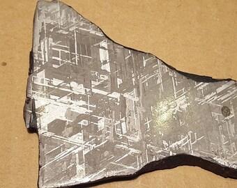 Beautiful Gibeon Meteorite Specimen