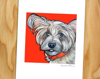 """8x10 Signed Print of """"Gomez"""" the Mixed Breed"""