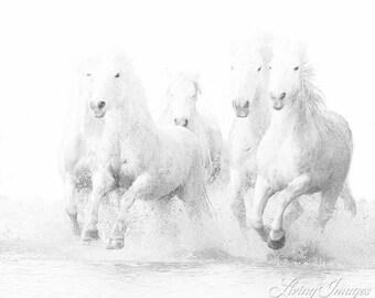 Ghost Horses Run - Fine Art Horse Photograph - Horse - Camargue - Black and White - Fine Art Print