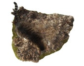 Wool Cat Bed - Humane Felted Fleece Pet Bed - Gray Coopworth - Ready to Ship - Supporting US Small Farms - Ready to Ship