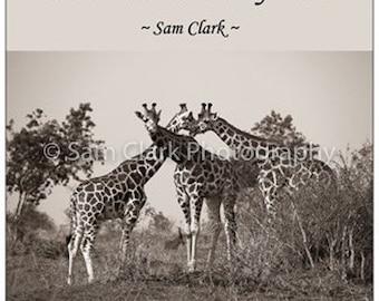 FRIDGE MAGNET - African fridge magnet, Giraffe fridge magnet, giraffe, animal magnet