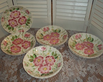 """8 Lot collection bowls, Blue Ridge Southern Potteries hand painted pottery wild desert rose 8"""" dessert/salad bowl..Reduced..WAS 52.99"""