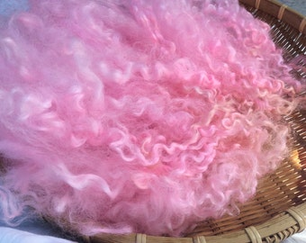 Hand Dyed British Teeswater Wool locks,44gms for Waldorf Dolls, Art Dolls, Blythe Dolls, Spinning and Felt making 'Cotton Candy' colorway