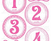 Monthly Milestone Baby Stickers Pretty in Pink Instant Download DIY Printable BONUS Just Born, 1-3 Weeks and Calendar Stickers LDD-039