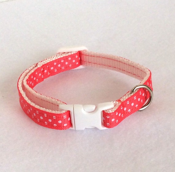 sport dog collar instructions