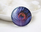 Round Glass Photo Cabochons Photo Glass Cabs-Feather (P3112)