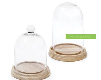 Glass Display Cloche Bell Jar with Wooden Base - We Can Package