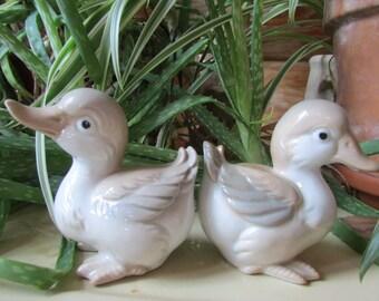 Vintage Porcelain Duck Figurines
