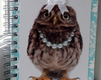 5 x 7 Lined Owl Journal