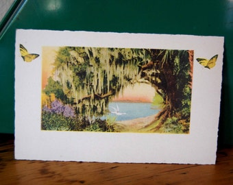 Vintage Large Postcard Florida Greeting Card Florida Highwaymen Style Art Printed In Saxony Card from The Eclectic Interior