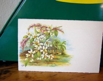 Vintage E. G. Barnhill Large Postcard Florida Greeting Card Florida Highwaymen Style Art Printed In Saxony Card from The Eclectic Interior