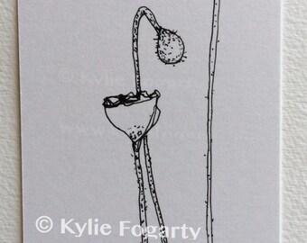 Black and White Poppy Pod Flower Drawing - SFA - ACEO - Fine Art Miniature- Poppy Flower Study - Wedding Thankyou Gift