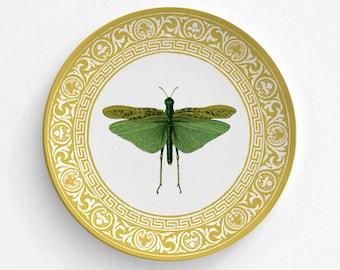 Melamine Plate - Locust Plate - Insect Locust Plate - Dinnerware - Melamine Dinner Plate - Vintage Insect Print - decorative plate