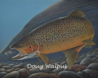 Brown Trout Fish Original Painting Acrylic Fly Fishing by artist Doug Walpus