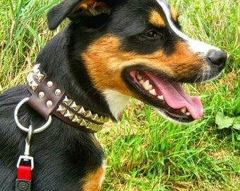 1.5 Inch Width Leather Dog Collar with Pyramid Studs