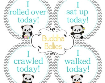 Milestone Stickers Set of 8 Gender Neutral Panda Stickers - Babys Firsts - Accomplishment Stickers - Add on to Matching Monthly Sticker Set