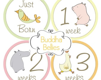 Baby Girl Baby FIRST MONTH Stickers - Vintage Circus Animals - Just Born Baby Monthly Sticker - Baby Girl - Baby Sticker - GN243