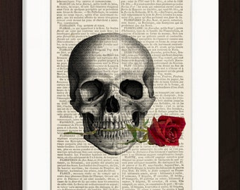 Skull with Rose In Teeth Print Mixed Media Digital on repurposed French English Dictionary Page