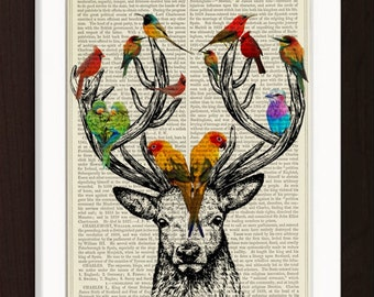 Deer Antlers Colorful Birds  print on vintage (1880's) upcycled Dictionary Encyclopedia book page