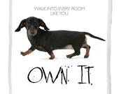 Own It. Dachshund card