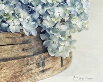 Flower Photography, Modern Rustic Farmhouse Decor, Blue Hydrangeas, Kitchen Wall Art, French Country Cottage Decor | 'Faded Denim'